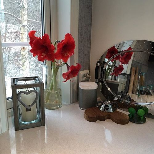 Litt jul igjen i kjøkkenvinduet, Amaryllis holder ut 👍🏻😊💐#amaryllis #juleblomst#blomster#lys#vinduskarm#sonos#alessi#iittala#kjøkken#tremedsnøpågreineneutenfor ❤️🎄