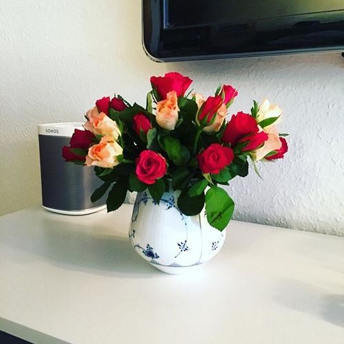 Selvforkælelse ! 😍 #blomster #flowers #roser #roses #rc #rcfb #rcifb #rcjapan #rcinspiration #royalcopenhagen #denmark #love #lovelife #lovelovelove #friday #endeligfredag #iloveit #aarhus #århus #smile #happy #japanese #cozy #blåguld #blåerdetnyesort #sonos #play1