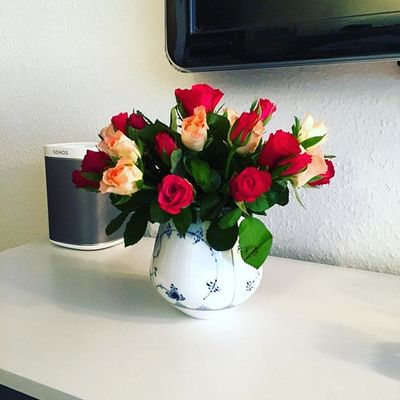 Selvforkælelse !  #blomster #flowers #roser #roses #rc #rcfb #rcifb #rcjapan #rcinspiration #royalcopenhagen #denmark #love #lovelife #lovelovelove #friday #endeligfredag #iloveit #aarhus #århus #smile #happy #japanese #cozy #blåguld #blåerdetnyesort #sonos #play1