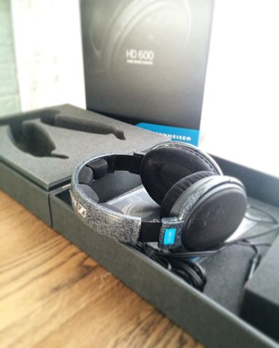 Sennheiser HD 600 - Audio Headphones High-end Surround sound