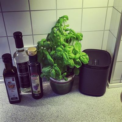 Nye højtalere!  #kaybojesen #abe #appletv #byloeth #byløth #sonos #play:1 #SonosAtHome #menu #flower #pot #danishdesign #home #happy #gay #gaystagram #gayboy #boy #instagay