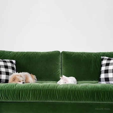 Perfect Image By Madame__pearl Containing Furniture, Green, Couch, Product, Bed
