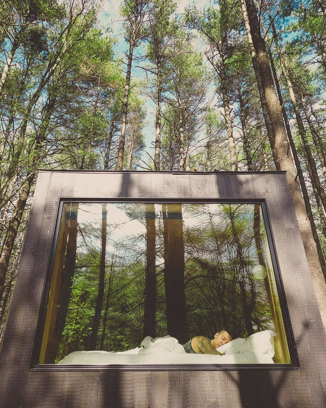 image by theaccidentalbohemian containing tree, plant, architecture, house, window