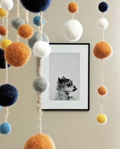 Quality Prints | Photo Books | Cards | Home Decor | Photo